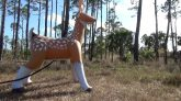 Jet-Creations-Inflatable-Deer-Deflation