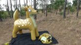Phenod-6-Foot-Blow-Up-Buck-Inflation
