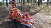 Pouncing-Tiger-Inflation