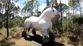 Puffy-Paws-Inflatable-Draft-Horse-Time-Lapse-Deflation