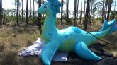 Puffy-Paws-Sea-Dragon-Time-Lapse-Inflation