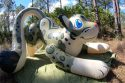 Puffy-Paws-Snow-Leopard-Deflation-Time-Lapse