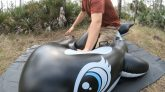 Riding-a-Rubbery-Intex-Whale-in-3D