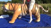 Riding-My-Jet-Creations-Tiger