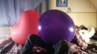 Blowing-and-Playing-with-a-Necked-Tuftex-24-inch-Balloon