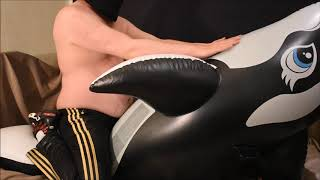 Fun-with-inflatable-orca