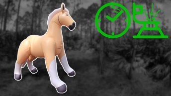 Life-Size-Ride-On-Palomino-Horse-Inflation-in-Time-Lapse