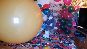 Electric-pump-to-pop-Cattex-553939-323939-long-neck-and-other-smaller-balloons