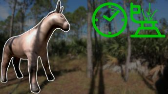 Life-Size-Inflatable-Donkey-Inflation-in-Time-Lapse